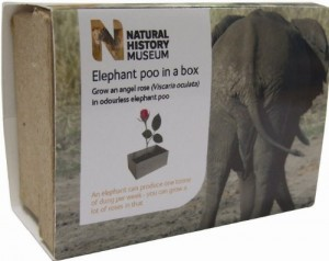 Elefantenkacke